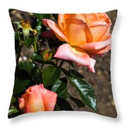 Beautiful Bloom Of The Rose Atlantic Star Throw Pillow