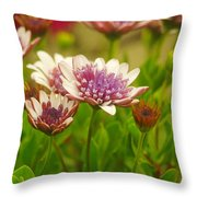 Beautiful Boquet Throw Pillow