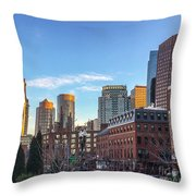 Beautiful Boston Throw Pillow