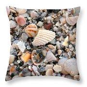 Beautiful Broken Shells Throw Pillow