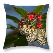 Beautiful Broken Wings Throw Pillow