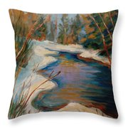 Beautiful Brook In Winter Throw Pillow