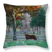 Beautiful Brown Horse Throw Pillow