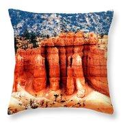 Beautiful Bryce Throw Pillow