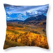 Beautiful Butte Throw Pillow