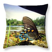 Beautiful Butterfly At The River II Throw Pillow