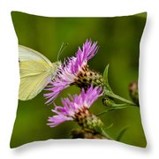 Beautiful Butterfly On Pink Thistle Throw Pillow