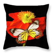Beautiful Butterfly On Poppy Throw Pillow