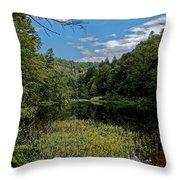Beautiful Clear Creek Throw Pillow
