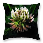Beautiful Clover Blossom Throw Pillow