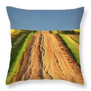 Beautiful Colors Along A Saskatchewan Country Road Throw Pillow