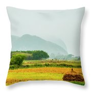 Beautiful Countryside Scenery In Autumn Throw Pillow
