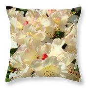 Beautiful Creamy White Pink Rhodies Floral Garden Baslee Troutman Throw Pillow