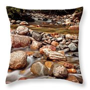 Beautiful Creek Throw Pillow