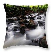 Beautiful Creek In Western Ghats Region Of Karnataka State India Throw Pillow