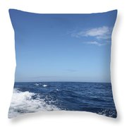 Beautiful Day On The Atlantic Ocean Throw Pillow