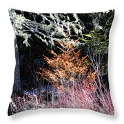 Beautiful Dead Throw Pillow