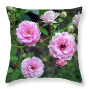 Beautiful Delicate Pink Roses On Green Leaves Background. Throw Pillow