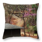 Beautiful Escape Throw Pillow
