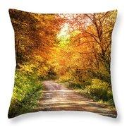 Beautiful Fall Day Throw Pillow