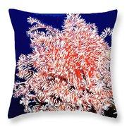 Beautiful Fan Coral Throw Pillow