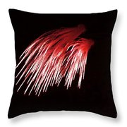 Beautiful Fire Works With Splash Of Red Color.  Throw Pillow
