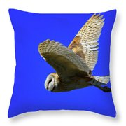 Beautiful Flight Throw Pillow