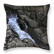Beautiful Flow Of Power Throw Pillow