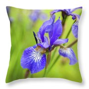 Beautiful Flower Iris Throw Pillow