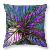 Beautiful Foliage  Throw Pillow