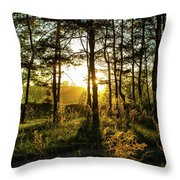 Beautiful Forest At Sunrise Throw Pillow