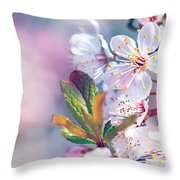 Beautiful Fruit Tree Blooming Throw Pillow