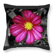 Beautiful Fuchsia Flower Throw Pillow
