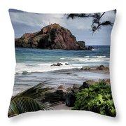 Beautiful Hawaii Throw Pillow