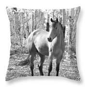 Beautiful Horse In Black And White Throw Pillow