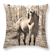 Beautiful Horse In Sepia Throw Pillow