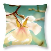 Beautiful Imperfections Throw Pillow by Louis Rivera