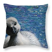 Beautiful In His Time Throw Pillow