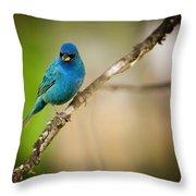 Beautiful Indigo Bird Throw Pillow