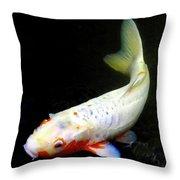 Beautiful Koi Fish Throw Pillow