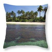 Beautiful Lanai Beach Throw Pillow