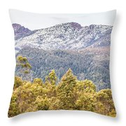 Beautiful Landscape With Partly Snowed Mountain  Throw Pillow