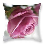 Beautiful Lavender Rose 2 Throw Pillow