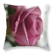 Beautiful Lavender Rose 3 Throw Pillow