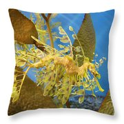 Beautiful Leafy Sea Dragon Throw Pillow by Brooke Roby