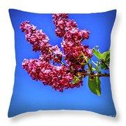 Beautiful Lilac Throw Pillow