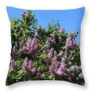 Beautiful Lilacs Day Throw Pillow