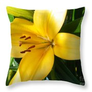 Beautiful Lily I Throw Pillow
