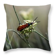 Beautiful Little Nightmare Throw Pillow
