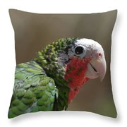 Beautiful Look At At The Profile Of A Conure Parrot Throw Pillow